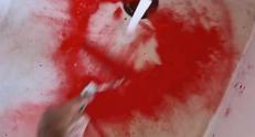 Bains de sang, vidéos, 2012