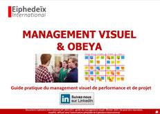 Guide du management visuel pdf et obeya.
