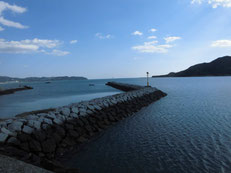 大海漁港 はこちらからどうぞ