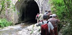 Traumschleife Masdascher Burgherrenweg