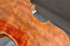 Peter Gallant Maine violin maker nontraditional wood
