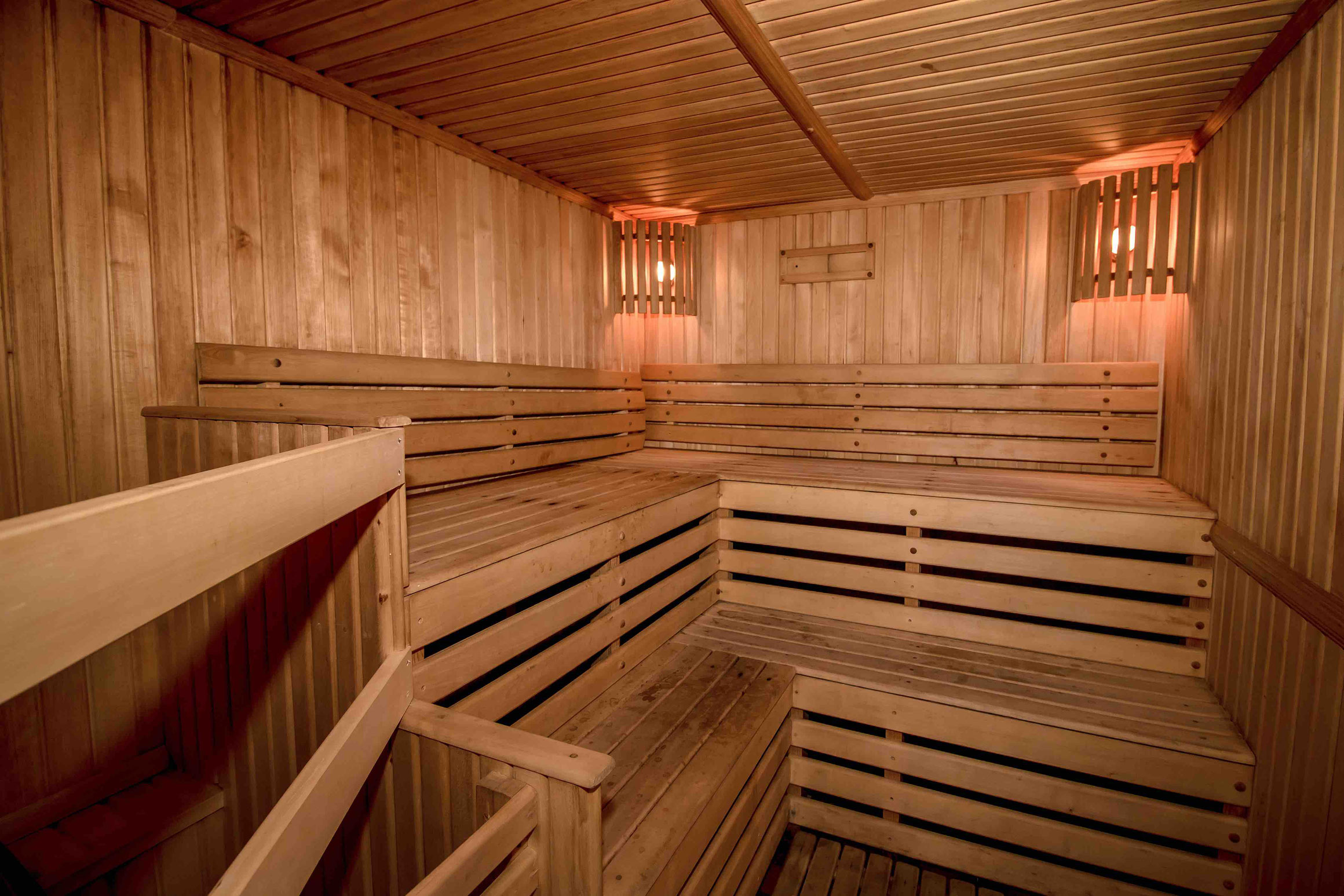 MS Nikolay Chernishevsky Sauna