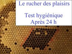 Test hygiénique après 24 h