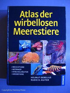 Atlas der wirbelosen Meerestiere