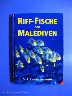 Riff-Fische der Malediven