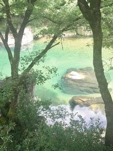 洞戸のキレイな川