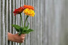 """Blog Wege Zum Glück """"Über das Glück des Gebens"""""""