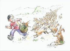 Hundert Hasen hoppeln hinter Hassan her