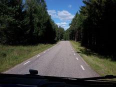 ... noch eine schwedische Straße...
