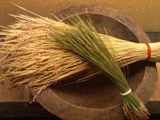 2013.01.02 謹賀新年!やはり稲穂はきれいだな、と思います。農耕民族・日本人♡