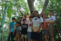 緑豊かな学校林にて