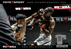 WE LOVE MMA - HAMBURG - 10.10.2015 - Barclaycard Arena