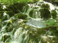Ultrafiltration, Wasseraufbereitung, Wassersparen, Sensorarmaturen, Uridan, Profidan, wasserlose Urinale, waterless, BEFA, Sansystems, Mensch & Wasser