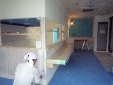 塗装工事中です。