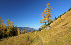 #schneibstein , #nationalpark , #königssee , #berchtesgaden , #kleine reiben, #wandern, #bayern , #natur , #landschaft