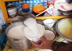 遊牧民の強壮剤、酸馬乳からNS乳酸菌は採集されました。