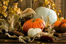 Halloween: Totengedenktag und Erntefest