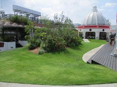 ラスカ平塚の屋上庭園