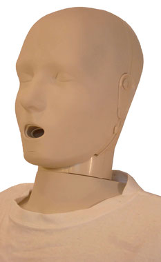 PRESTAN Adult Jaw Thrust Manikin