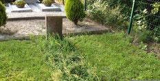 In der hinteren rechten Ecke des Friedhofes ruht der sowjetische Kriegsgefangene Alexandr Kolywanow (213994 XB). Er starb am 20. April 1945. Foto: L. Hellwinkel, 2019