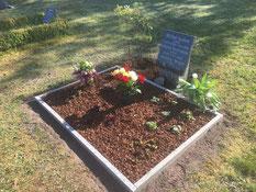 Grabanlage für die sowjetische Zwangsarbeiterin Jewdokia Besgin und die sowjetischen Kriegsgefangenen Michail Iwanow (39232 XD) und Grigorij Pestrjakow (41221 XD). Foto: C. Both