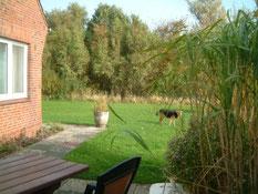Blick von der Terrasse zum Garten