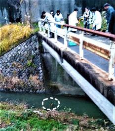 川にバケツを投げて、採水・・。
