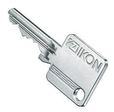 IKON Vector Schlüssel kopieren