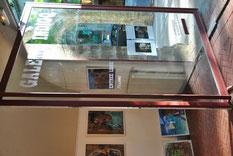 uzes-exposition-artiste-sylvie-roussel-meric