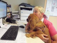 Winnie bei der Arbeit
