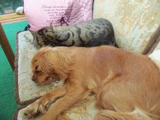 Winnie mit ihrem Kumpel