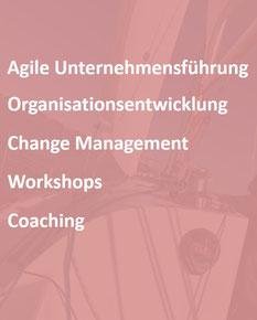 anderskom agile Unternehmensberatung: Leistungen