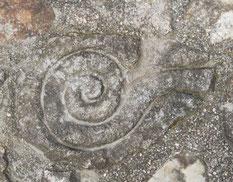 Escultura en piedra, celta, castrexo, serpiente. Monte Santa Trega, A Guarda, Pontevedra, Galicia