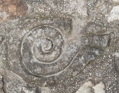 Stone sculpture, celtic, snake. Monte Santa Trega, A Guarda, Pontevedra, Galicia