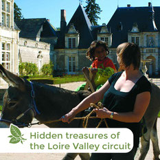 Nature Loire Valley - Donkey treks - Overnight hikes - Hidden treasures of the Loire Valley circuit