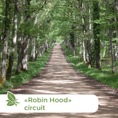Nature Loire Valley - Donkey treks - Overnight hikes - Robin Hood circuit