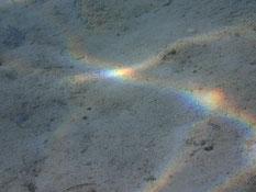 光が反射して虹がいっぱい