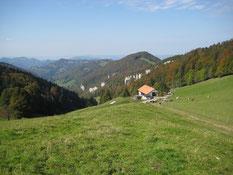Blick vom Vogelberg bis zu den Vogesen