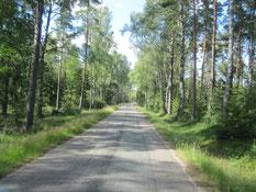 Schwedische Straße...