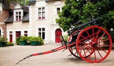 Les ânes de Madame - Balades accompagnées en Sologne, Val de Loire, châteaux de Chambord, Cheverny, Villesavin, du Moulin - Vacances nature en famille et entre amis - Nuit au château de Troussay à Cheverny