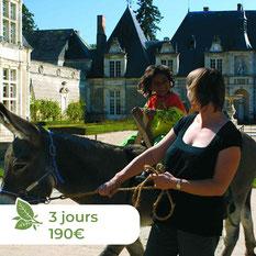 Les ânes de Madame - Balades accompagnées en Sologne, Val de Loire, châteaux de Chambord, Cheverny, Villesavin, du Moulin - Randonnées itinérantes Trésors cachés du Val de Loire