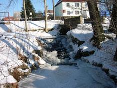 Bild: Teichler Seeligstadt Januar 2006