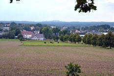 Bild: Teichler Seeligstadt Arnsdorf Tanneberg