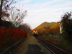 上神梅駅で待ち合わせ中 トロッコ列車が通過