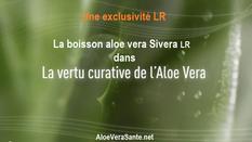 La vertu curative de l'aloe vera avec LR Health and Beauty