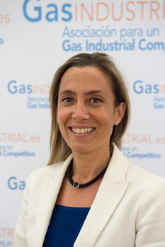 Juan Vila, Presidente de GasINDISTRIAL