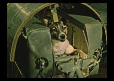 Собака Лайка в капсуле космического корабля
