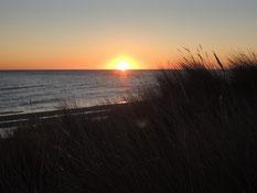 Sonnenaufgang über der Ostsee am Lyngså Strand. Foto: C. Schumann, 2019