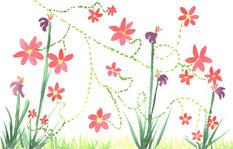 Grußkarte Frühlingsblümchen