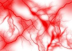 血液や血流のイメージ写真